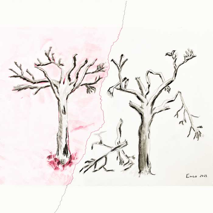 arbol en tinta china ilustracion de amaia tubia